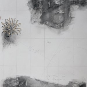 Rotta per le Esperidi (2019) - charcoal, china ink, pencil, golden leaf and wax on paper  105 x 76 cm