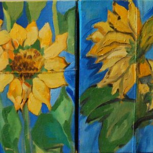 sunflowers , 4 x 30 x 40 , oil on canvas jeans