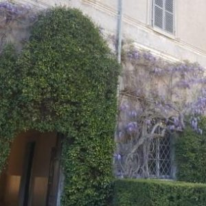 the main entrance with wisteria