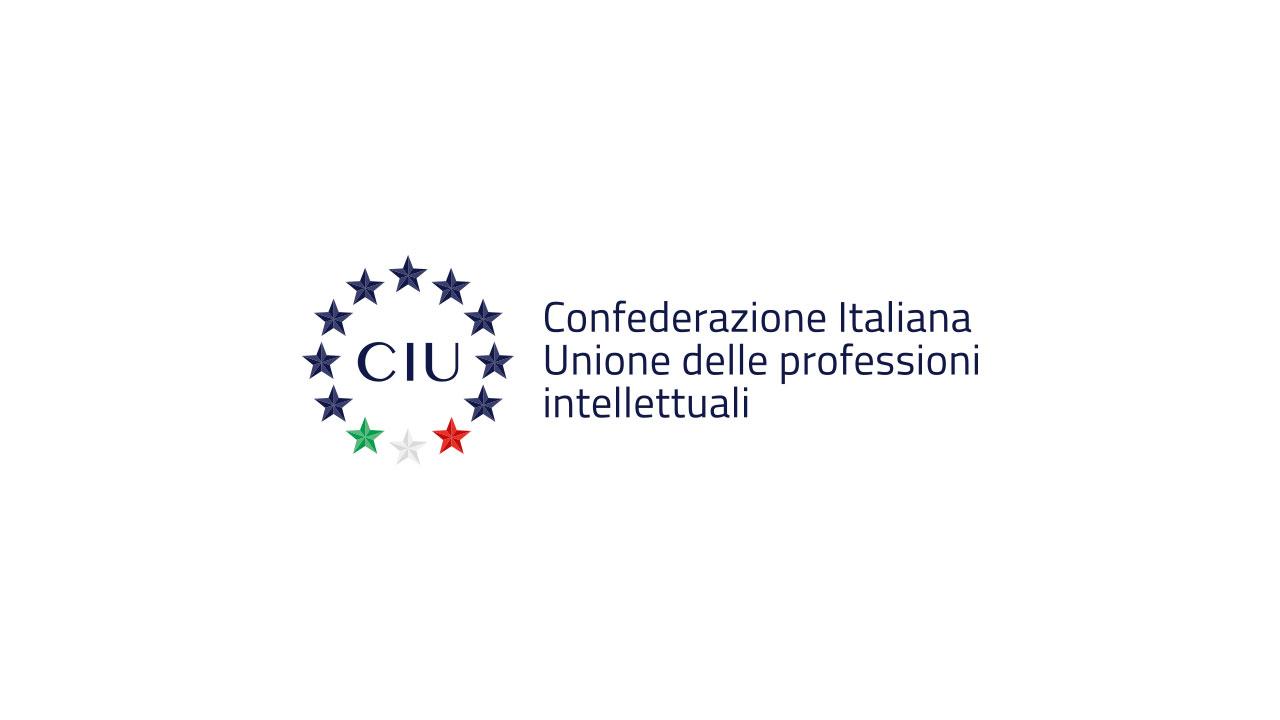 Confederazione Italiana di Unione delle Professioni intellettuali