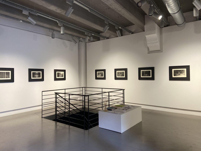 Quattro chiacchiere con Francesca Anfosso – 28 Piazza di Pietra – Fine Art Gallery